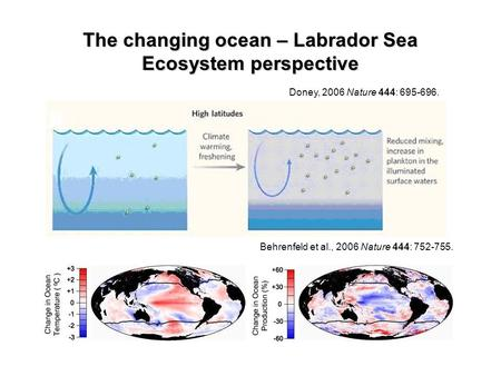Doney, 2006 Nature 444: 695-696. Behrenfeld et al., 2006 Nature 444: 752-755. The changing ocean – Labrador Sea Ecosystem perspective.