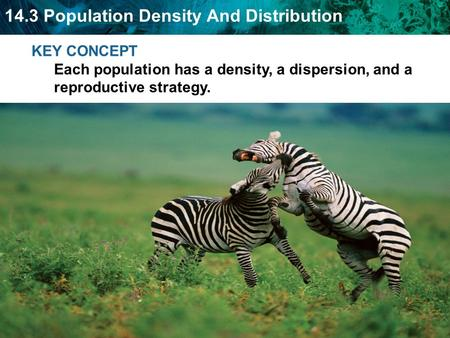 Population density - number of individuals that live in a defined area.