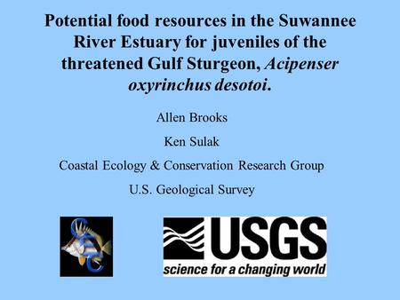 Potential food resources in the Suwannee River Estuary for juveniles of the threatened Gulf Sturgeon, Acipenser oxyrinchus desotoi. Allen Brooks Ken Sulak.
