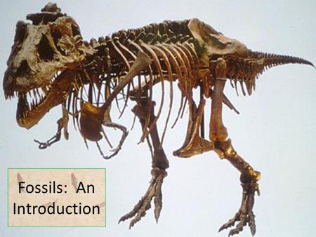 Fossils: An Introduction. The Theory of Evolution by Natural Selection Evolution is a theory (set of related, well-supported hypotheses) that explains.