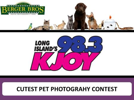CUTEST PET PHOTOGRAHY CONTEST. Example of Homepage Flashbox promoting online contest SUBMIT YOUR PHOTO AND YOU COULD WIN A $300 BERGER BROTHERS GIFT CARD!
