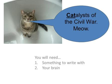 You will need… 1.Something to write with 2.Your brain Catalysts of the Civil War. Meow.