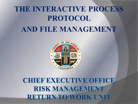 THE INTERACTIVE PROCESS PROTOCOL AND FILE MANAGEMENT 1.