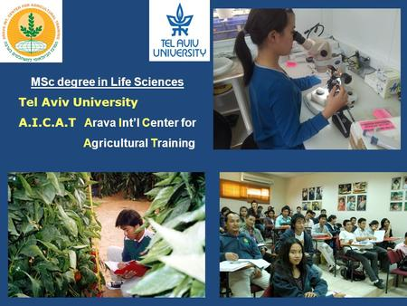 MSc degree in Life Sciences Tel Aviv University A.I.C.A.T Arava Int'l Center for Agricultural Training.