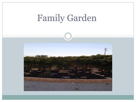 Family Garden. Written Description My project is related to agriculture because I worked with planting seeds and growing my plants. I planted various.