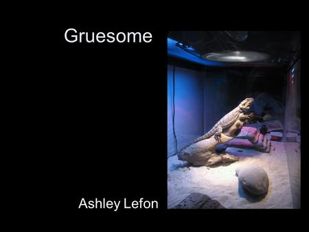 Gruesome Ashley Lefon. Artistic Statement Its for the love of rubbernecking in all us. Its having to look at the train wreck even though it makes you.