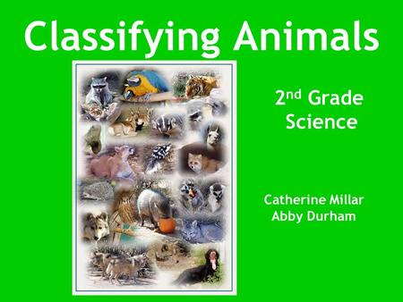 Classifying Animals Catherine Millar Abby Durham 2 nd Grade Science.