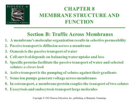 CHAPTER 8 MEMBRANE STRUCTURE AND FUNCTION Copyright © 2002 Pearson Education, Inc., publishing as Benjamin Cummings Section B: Traffic Across Membranes.