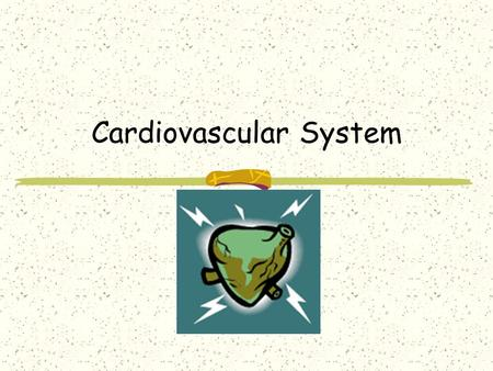 Cardiovascular System. If your heart… Beats about 70 times per minute, how many times does it beat in a day? 100,800 In a week? 705,600 In a year? 36,792,000.
