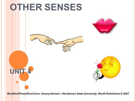 OTHER SENSES UNIT 4 Modified PowerPoint from: Aneeq Ahmad -- Henderson State University. Worth Publishers © 2007.