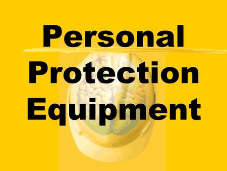 responsibilities of personal protection Roles responsibilities area safety leaders determine (through consultation  with supervisors ,work leads.