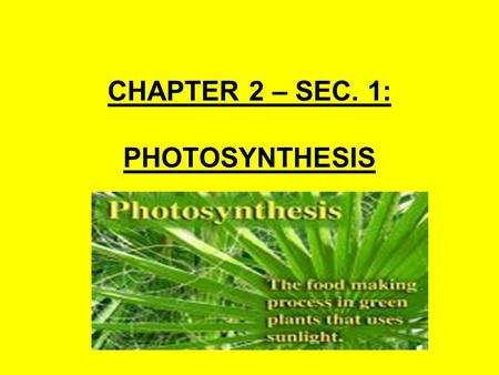 CHAPTER 2 – SEC. 1: PHOTOSYNTHESIS. I. WHAT IS PHOTOSYNTHESIS? Every living organism on this planet needs energy to function. For example, cells need.
