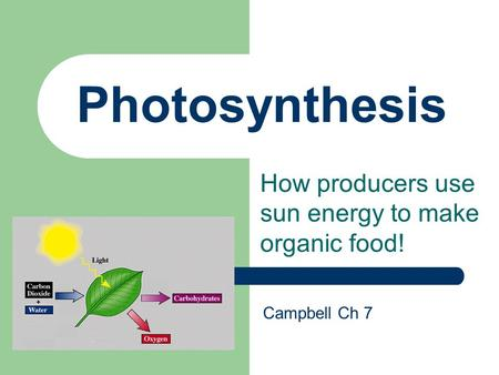 producers that use chemosynthesis An example of chemosynthetic bacteria is which absorb sunlight to produce food for themselves chemosynthesis chemosynthesis is the oldest way for.