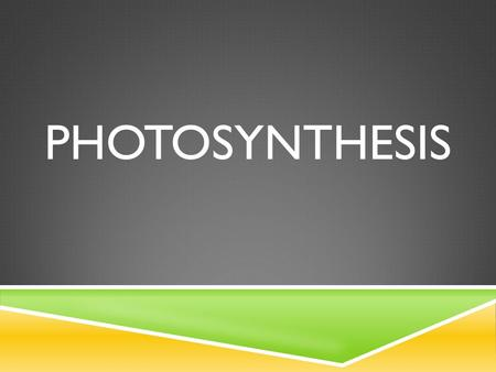 PHOTOSYNTHESIS. WHAT IS PHOTOSYNTHESIS?  The process of photosynthesis is a chemical reaction.  It is the most important chemical reaction on our planet.