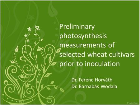 Preliminary photosynthesis measurements of selected wheat cultivars prior to inoculation Dr. Ferenc Horváth Dr. Barnabás Wodala.