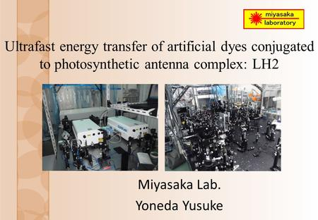 Ultrafast energy transfer of artificial dyes conjugated to photosynthetic antenna complex: LH2 Miyasaka Lab. Yoneda Yusuke.