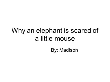 Why an elephant is scared of a little mouse By: Madison.