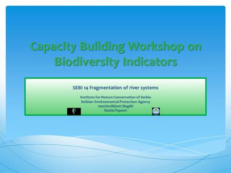 Capacity Building Workshop on Biodiversity Indicators SEBI 14 Fragmentation of river systems Institute for Nature Conservation of Serbia Serbian Environmental.