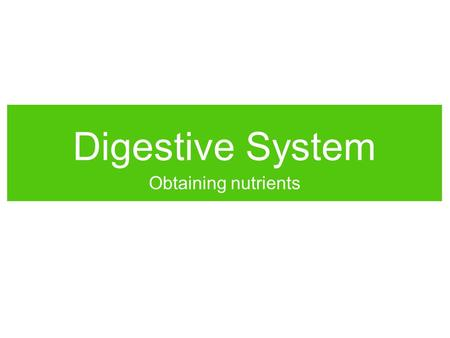 Digestive System Obtaining nutrients. Energy Body cells need energy to run cell processes. Animals obtain chemical energy from food. Energy is derived.