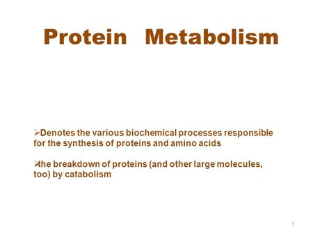 Protein Metabolism 1  Denotes the various biochemical processes responsible for the synthesis of proteins and amino acids tthe breakdown of proteins.
