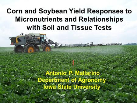 Corn and Soybean Yield Responses to Micronutrients and Relationships with Soil and Tissue Tests Antonio P. Mallarino Department of Agronomy Iowa State.