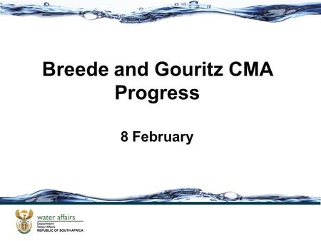 Breede and Gouritz CMA Progress 8 February. Outline Steering Committee update and Stakeholder consultation Implementation plan and communication plan.