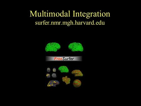 Multimodal Integration surfer.nmr.mgh.harvard.edu