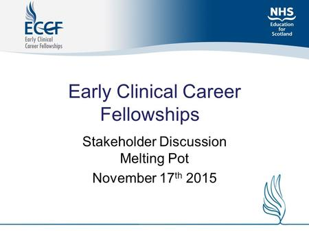 Early Clinical Career Fellowships Stakeholder Discussion Melting Pot November 17 th 2015.