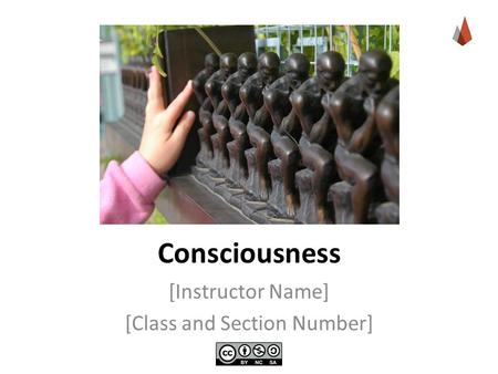 Consciousness [Instructor Name] [Class and Section Number]