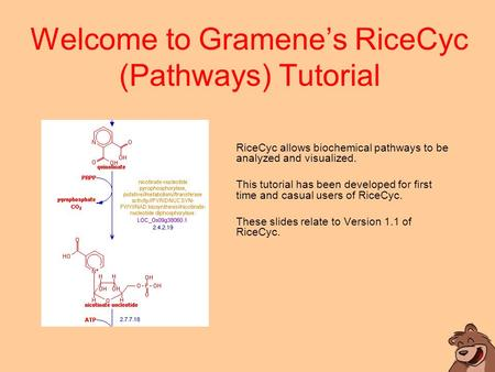 Welcome to Gramene's RiceCyc (Pathways) Tutorial RiceCyc allows biochemical pathways to be analyzed and visualized. This tutorial has been developed for.