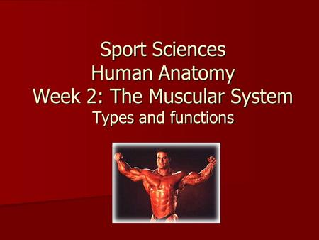 Sport Sciences Human Anatomy Week 2: The Muscular System Types and functions.