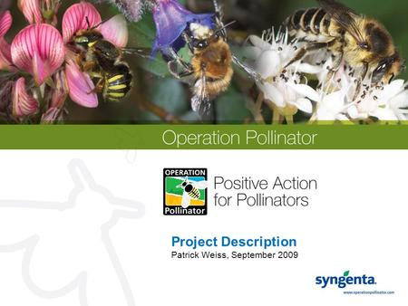 Project Description Patrick Weiss, September 2009.