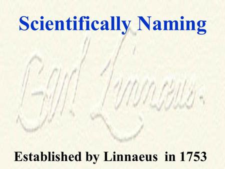 Scientifically Naming