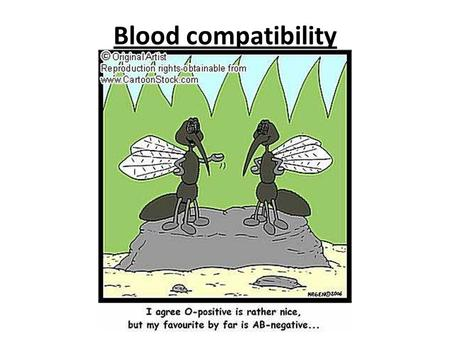 Blood compatibility.