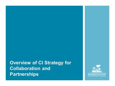 Overview of CI Strategy for Collaboration and Partnerships.
