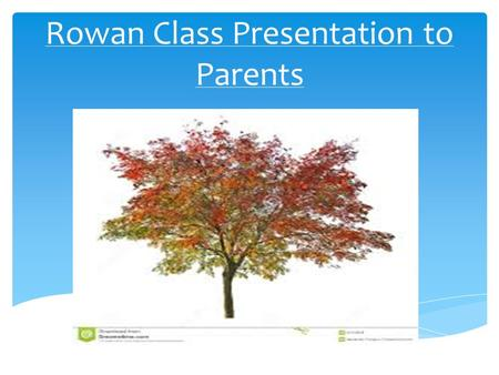 Rowan Class Presentation to Parents.  Mrs Philippa Carter– Class Teacher, Deputy Head and Literacy Subject Leader  Mrs Linda May – Teaching Assistant.