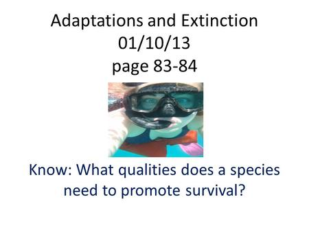 Adaptations and Extinction 01/10/13 page 83-84 Know: What qualities does a species need to promote survival?