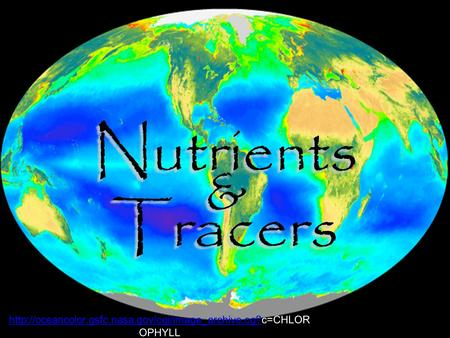 Nutrients & Tracers Nutrients & Tracers