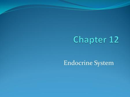 Endocrine System. Organs of the Endocrine System.