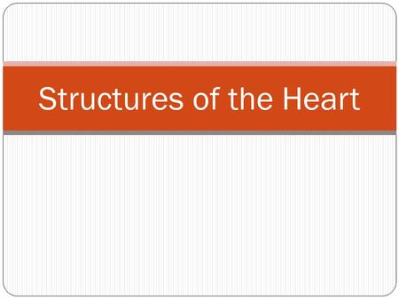 Structures of the Heart. Chambers Your heart is divided into 4 chambers: Right and Left Atria Right and Left Ventricles.