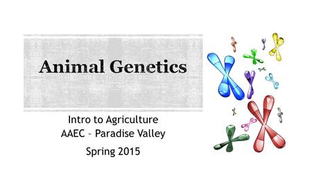 Intro to Agriculture AAEC – Paradise Valley Spring 2015