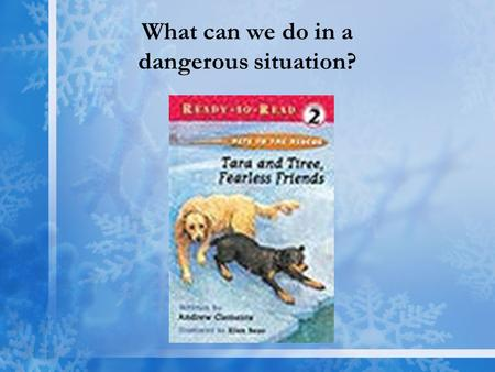 What can we do in a dangerous situation?. Tara & Tiree, Two Good Friends Vocabulary Words collar slipped brave Amazing Words courageous hazard rescue.