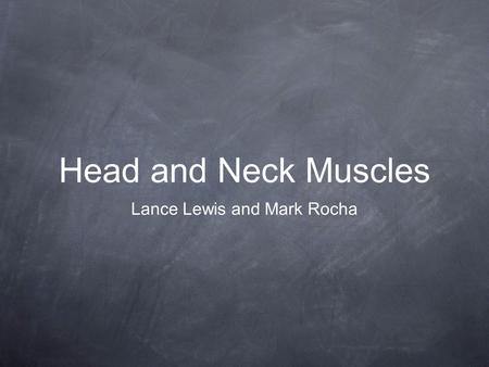 Head and Neck Muscles Lance Lewis and Mark Rocha.