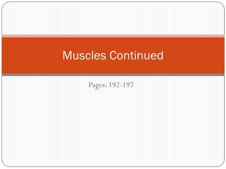 Pages: 192-197 Muscles Continued. Skeletal Muscle Action Dependent mostly on the kind of joint it is associated with and the way the muscles attaches.
