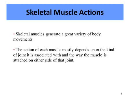 1 Skeletal Muscle Actions Skeletal muscles generate a great variety of body movements. The action of each muscle mostly depends upon the kind of joint.