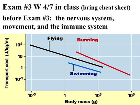 Exam #3 W 4/7 in class (bring cheat sheet) before Exam #3: the nervous system, movement, and the immune system.