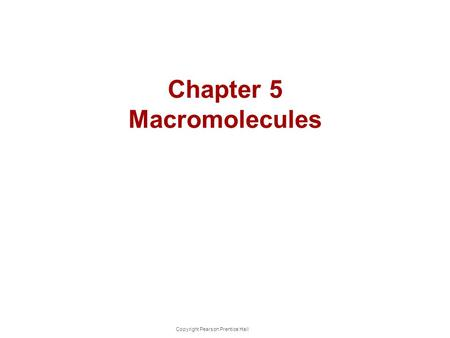 Chapter 5 Macromolecules Copyright Pearson Prentice Hall.