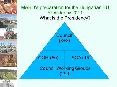 MARD's preparation for the Hungarian EU Presidency 2011 What is the Presidency? Council Working Groups (250) COR (50) SCA (15) Council (8+2)