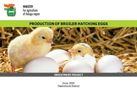 PRODUCTION OF BROILER HATCHING EGGS INVESTMENT PROJECT Incor, OOO Meshchovsk District.