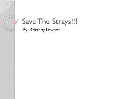 Save The Strays!!! By: Brittany Lawson. Why I chose Save the Strays There are 45 cats and dogs for every person born. Only 1 out of 10 dogs born ever.